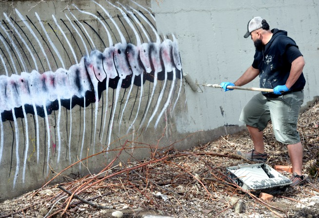 GRAFFITI.jpg John Gomez of the city of Boulder's Transportation Maintenance Department, cleans up one of two fish skeleton graffiti along a retaining wall on Boulder Creek between Broadway Monday morning. Gomez says the graffiti was cleaned by request through the city's reporting app. Photo by Paul Aiken / The Boulder Daily Camera / March 17, 2014 For a video of the cleanup go to www.dailycamera.com.
